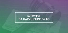 Закон о 54-фз